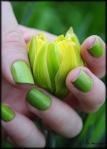bugs_saintpatricksday_greenails_24