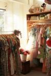 bugs_closet_32