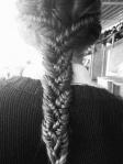 bugs_hair braid_trança_4