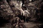 bugs_Kirsty Mitchell_wonderland_6